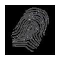 Security business lines - Bio-metrics Solutions